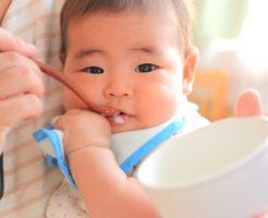 離乳食初期の準備に、ブラウン『ハンドブレンダー』がおすすめ | 中期・後期以降も使える | 育児便利グッズ #7